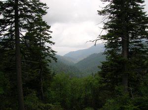 Mountaina