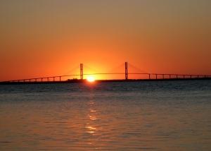 Sydney Lanier Bridge from Driftwood Beach