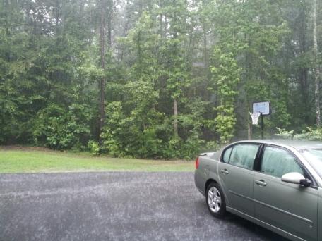 Rainy Driveway